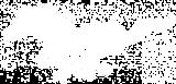 mustang-clip-art-9cRGMkKce